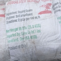 Fossilized Seabird Guano - Ingredients for Papa's Fertilizer